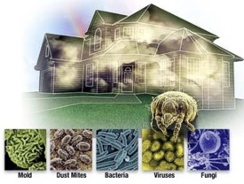 all homes have many invisible micro-organisms floating in the air, including a variety of molds, viruses, and bacteria